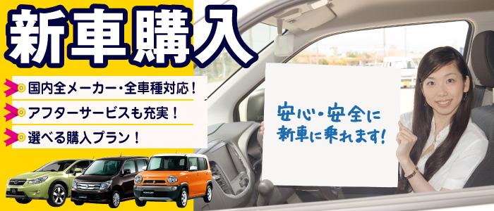 new_car_slide04